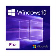 microsoft_windows_pro_10